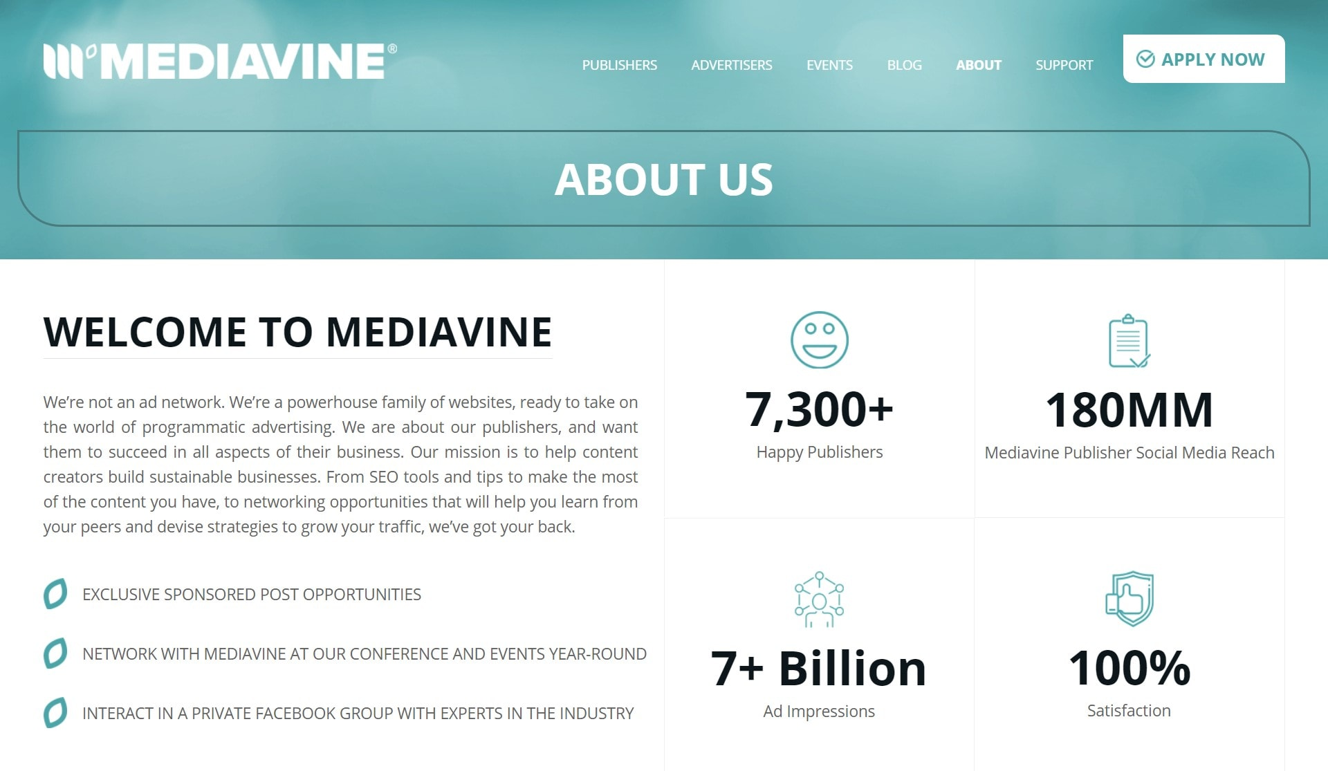 Screengrab from Mediavine 'About Us' page